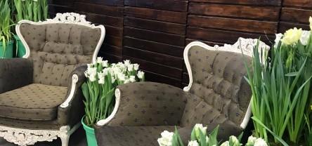 Виставка-продаж весняних квітів 2021